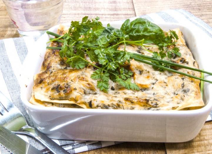 Lasagnes herbacées