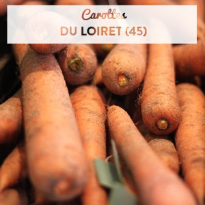 carottespath