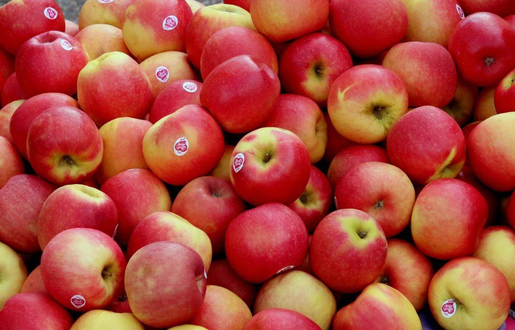 cageot-de-pommes